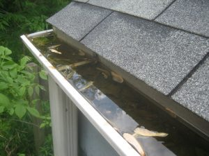 Clogged Gutters (Google Image Search)