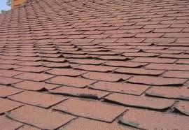 curledshingles