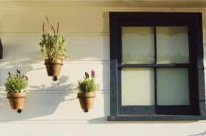 Getting Your Home In Shape For Summer