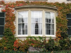 The Perk & Quirks of the Bay Window